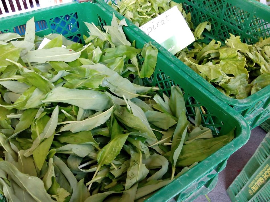 Fotocredits: DorisWorld - Bärlauch und Spinat am Markt