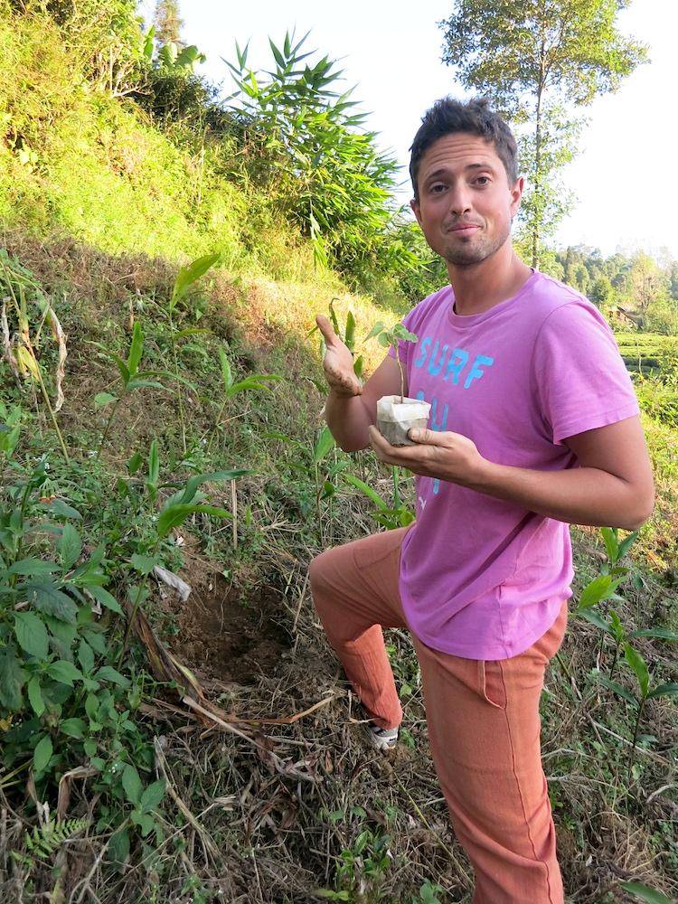 Fotocredits: http://wuckee.me/volunteer-teefarm-nepal/