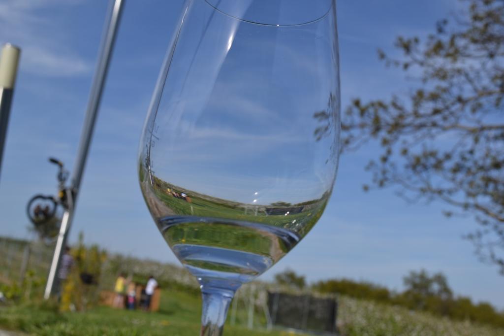 Bildcredits: DorisWorld - Ein Blick durchs Glas im Frühling