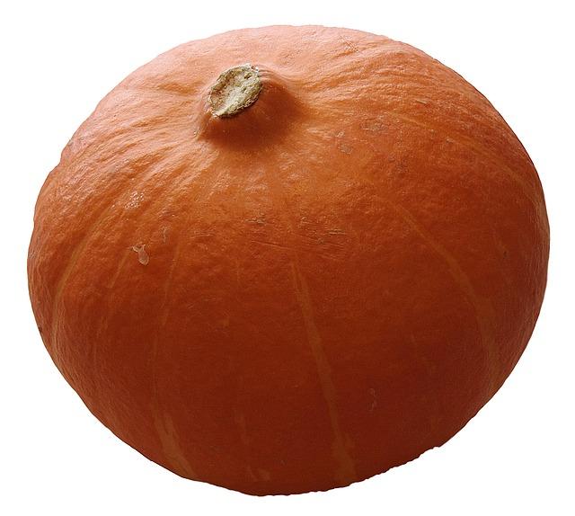 pumpkin-74282_640