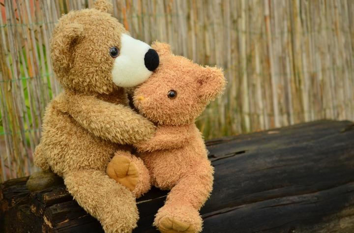 teddy-1113160_1920