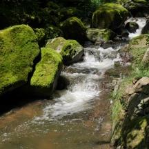 Bildcredits: Dorisworld.at   Pesenbachtal