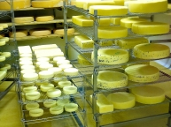 Bildcredits: Dorisworld.at | Reife-Raum für Käse