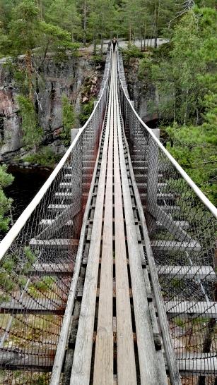 Bildcredits: Dorisworld.at | Auf der Hängebrücke im Nationalpark