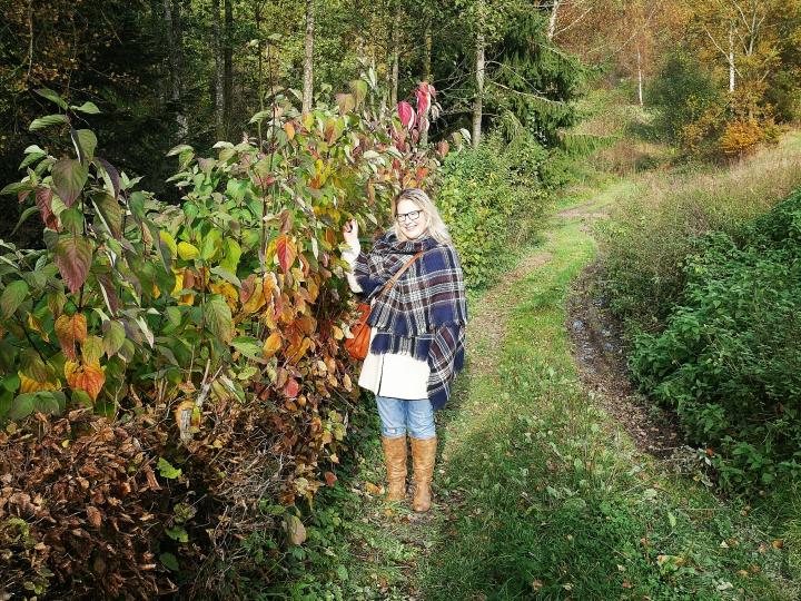 Drei Erfahrungen im Oktober, Herbst bitte dableiben!