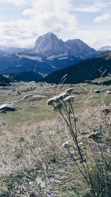 Bildcredits: Dorisworld.at | Hütten, Alm Gröden, Südtirol