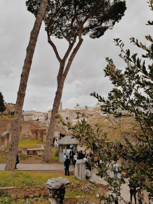 Bildcredits: Dorisworld.at | Blick vom Kolosseum in die Stadt
