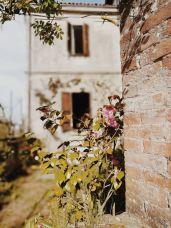 Bildcredits: Dorisworld.at | Rosen in Bossolasco