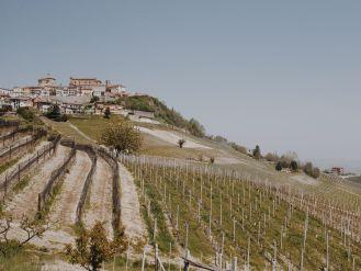 Bildcredits: Dorisworld.at   Durch die Weingärten Piemont