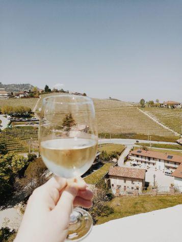 Bildcredits: Dorisworld.at   Weinchen im Piemont